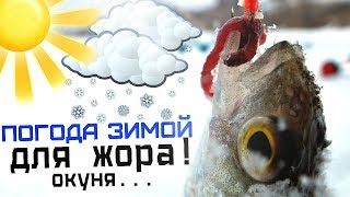 В какую давление лучше клюет рыба зимой