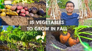 15 Vegetables YOU MUST Grow in FALL or AUTUMN