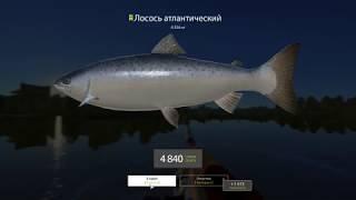 Рыбалка на волхове с берега места 2018