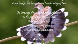 Wings Of Love 💕 Chris Norman