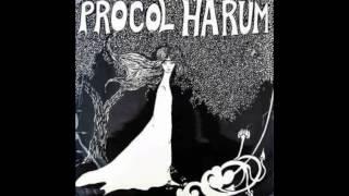 Procol Harum - She Wandered Through The Garden Fence (Drum Break - Loop)