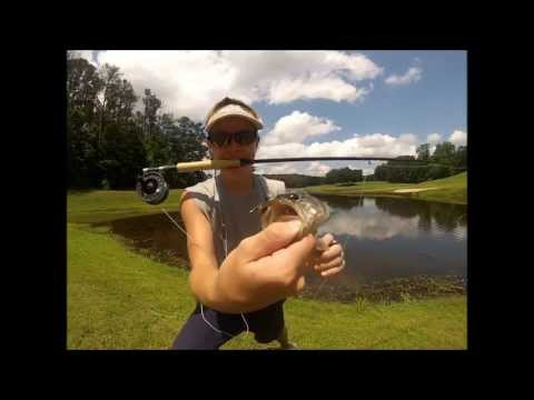 Fly Fishing a Golf Course Pond