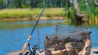 Пожелания хорошей рыбалки в картинках