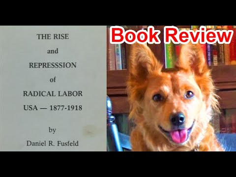 The Rise and Repression of Radical Labor by Daniel Fusfeld - Review