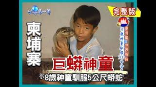 【柬埔寨】拜訪巨蟒神童 8 歲神童馴服 5 公尺蟒蛇!(捉蟋蟀撈田螺野趣 / 燕窩養殖過程)|《世界第一等》256集完整