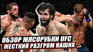 Обзор заруб наших на UFC Москва! Глухие нокауты! Разгром Россиян! Забит-Каттар, Волков. Нурмагомедов