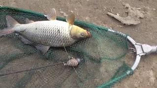 Рыбалка в октябре на рефтинском водохранилище
