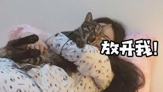 过节回老家猫怎么办?当然是带着,晚上还能用来暖床【干物猫青团VLOG】