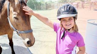 I MEET SPIRIT the Horse!