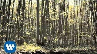 Arisa - Quante Parole Che Non Dici (Videoclip Official Trailer)