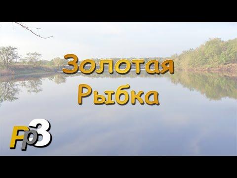 Русская Рыбалка 3.8 Золотая рыбка
