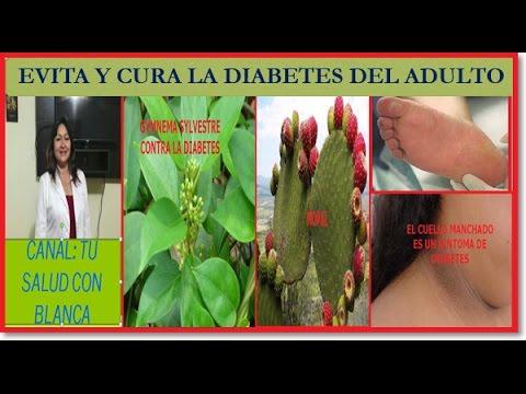 Aumento de la potencia de remedios populares para la diabetes