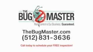 The Bug Master Pest Control  Exterminating