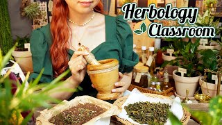 ASMR Witch's Herbal Magic🌱 Herbology Classroom
