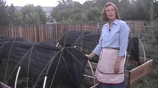 Raised Bed Gardening in Colorado - Hoop Houses