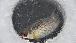 Зимняя рыбалка в зимнее время