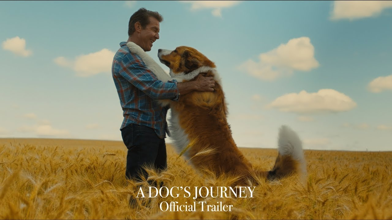 a dogs purpose trailer