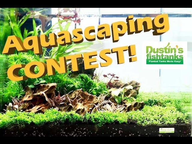 Planted Aquarium Design- Aquascaping Contest New York 2017