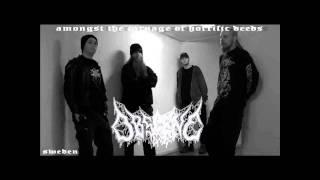 Obscene - Putrefacted Female Corpse [Promo 2005 - Sweden]