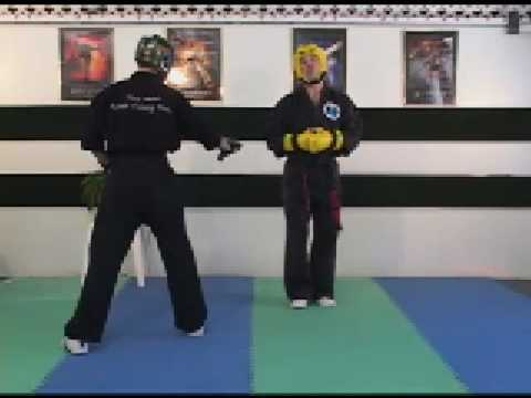 Sport Karate Sparring Hand Position Check Distance