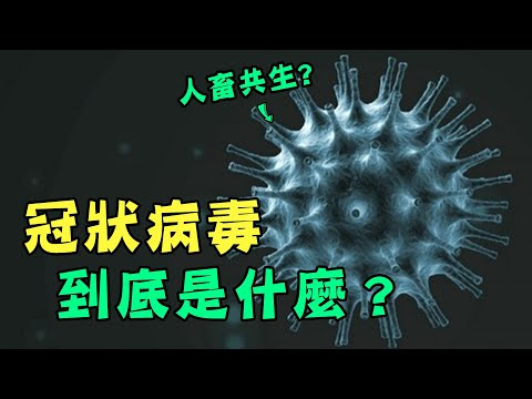 你們知道冠狀病毒是什麼嗎?