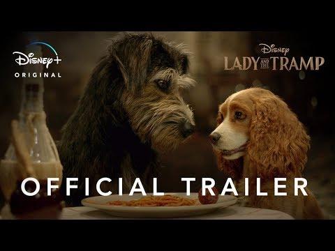 迪士尼經典名作《 小姐與流氓》真狗版電影預告公開!