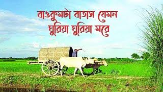 বাওকুমটা বাতাস যেমন ঘুরিয়া ঘুরিয়া মরে | Baokumta batash jemon ghuria ghuria more