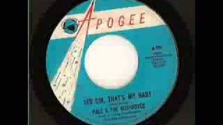 HALE  & THE HUSHABYES-Yes Sir, That's My Baby