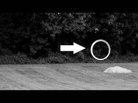 Alien Caught on Tape in Minnesota