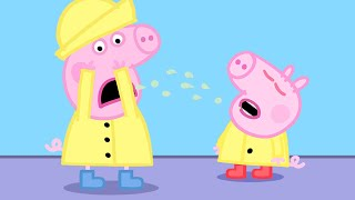 Peppa Pig Official Channel | George Catches a Cold