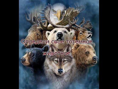 Астролог сериал 2014