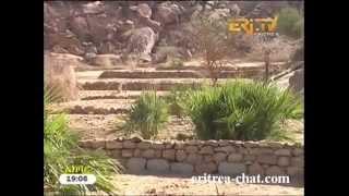 Eritrean Tigre News  6 May 2013 by Eritrea TV