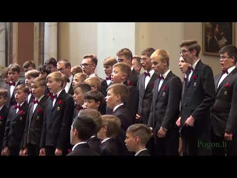 lietuvių meno ansamblio dainava jav ir Šiaulių berniuk