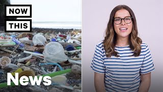 Plastic Pollution is Causing Problems in Our Oceans | NowThis