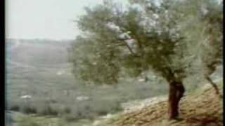 Pinchas Zukerman: Four Seasons Summer II. Adagio