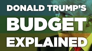 So what does Donald Trump's proposed budget cut
