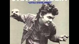 Steve Forbert - Rain ( Little Stevie Orbit )