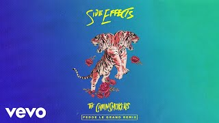 The Chainsmokers Ft Emily Warren - Side Effects (Fedde Le Grand Remix) video