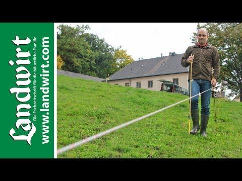 Weidezaun bauen | landwirt.com