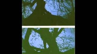 Slouch - Fever Tree