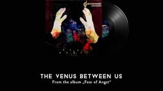 DISHARMONIC ORCHESTRA - The venus between us