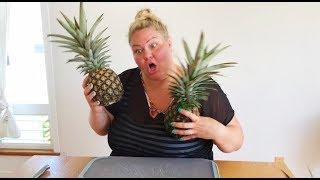 Trying A $30 Sugarloaf Pineapple In Hawaii (Kauai & Maui Vacation)