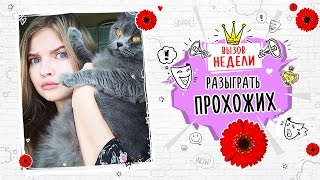 #Вызовбезправил: Алина Солопова