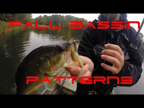 Pond Bass Fishing on a Jon Boat (Perfect Conditions!)