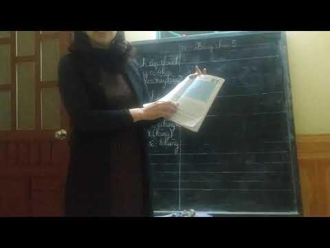 BÀI PHÉP CHIA ( PHẦN 4) . TOÁN LỚP 2