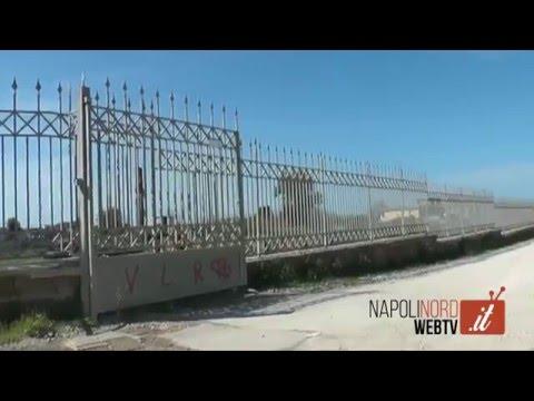 GIUGLIANO, TOMBA DI SCIPIONE L'AFRICANO: IL DEGRADO CHE CANCELLA LA STORIA. GUARDA IL VIDEO