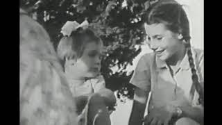 מזרע משנת 1935