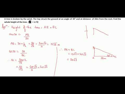 Trigonometry Part 33 Solutions for Class 10 CBSE