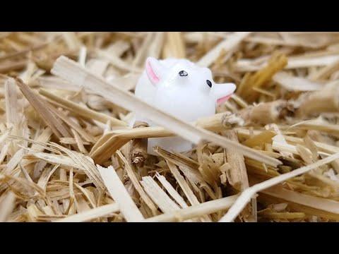 Getting Lost in a Corn Maze