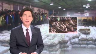 2015년 09월 21일 방송 전체 영상